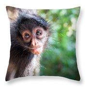 Hanging Spider Monkey Throw Pillow