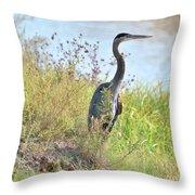 Hank The Blue Heron Throw Pillow