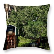 Hanks Roost Throw Pillow