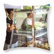 Hanoi, Vietnam  Vietnamese Street Food Seller Li Throw Pillow