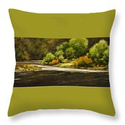 Lewis River Lagoon Throw Pillow