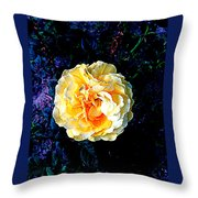 Happiness 3 Throw Pillow