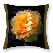 Happiness 5 Throw Pillow