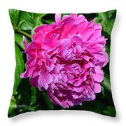 Happiness In Color Throw Pillow