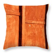 Happiness Within Reach Throw Pillow