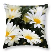 Happy After Rain Shower Throw Pillow