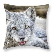 Happy Arctic Fox Throw Pillow