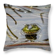 Happy As Afrog Throw Pillow