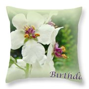 Happy Birthday - Floral - Moth Mullein Throw Pillow