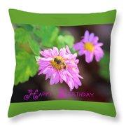 Happy Birthday Daisy Throw Pillow