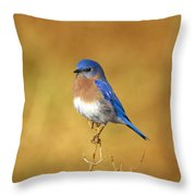 Happy Blue Bird Throw Pillow