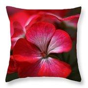 Happy Bright Geranium Throw Pillow