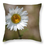 Happy Daisy In The Sun Throw Pillow