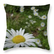 Happy Daisy Throw Pillow