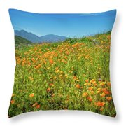 Happy Days In Walker Canyon Throw Pillow