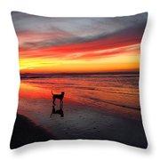 Happy Dog At Sunset Throw Pillow