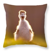 Happy Easter - Cute Baby Gosling Throw Pillow
