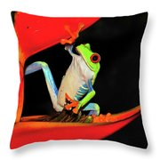 Happy Frog Throw Pillow