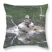 Happy Grebe Dance Throw Pillow