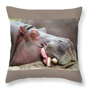 Happy Hippo Throw Pillow