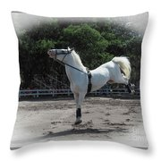 Happy Horse Throw Pillow