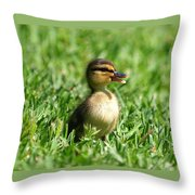 Happy Lil Duck Throw Pillow