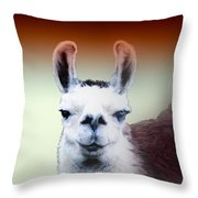 Happy Llama Throw Pillow by Myrna Migala