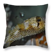 Happy Puffer Throw Pillow