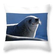 Happy Seal Throw Pillow