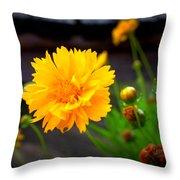 Happy Spring Flower Throw Pillow