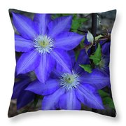 Happy To Be Here Throw Pillow