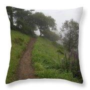 Happy Trail Throw Pillow