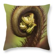 Hapuu Fern Frond Shoot Throw Pillow