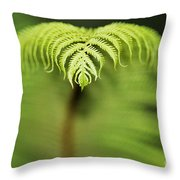 Hapuu Fern Throw Pillow