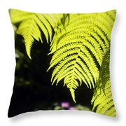 Hapuu Ferns Throw Pillow