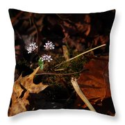 Harbinger Of Spring In Lost Valley Throw Pillow