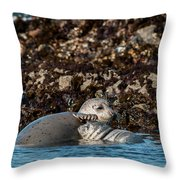 Harbor Seal And Pup Throw Pillow