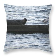 Harbor Seal Hangin With A Friend Throw Pillow