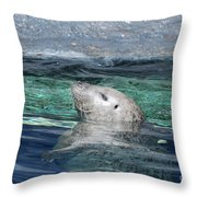 Harbor Seal Poking His Head Out Of The Water Throw Pillow