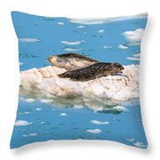 Harbor Seals On Clouds Of Ice Throw Pillow