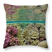 Hard Coral Carpets A Shallow Seafloor Throw Pillow by Brian J. Skerry