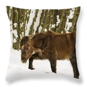 Hardships Of Winter Throw Pillow