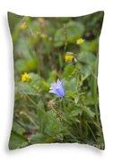 Harebell - Campanula Rotundifolia - Flower Throw Pillow