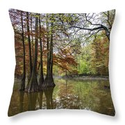 Harmony Of The Swamp Throw Pillow