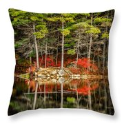 Harold Parker State Park In The Fall Throw Pillow
