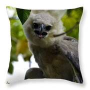 Harper Eagle Throw Pillow