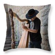 Harpist Street Musician, Barcelona, Spain Throw Pillow