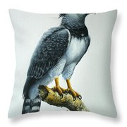 Harpy Eagle Throw Pillow