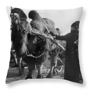 Harriet Chalmers Adams Throw Pillow