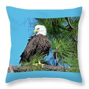 Harriet One More Look  Throw Pillow